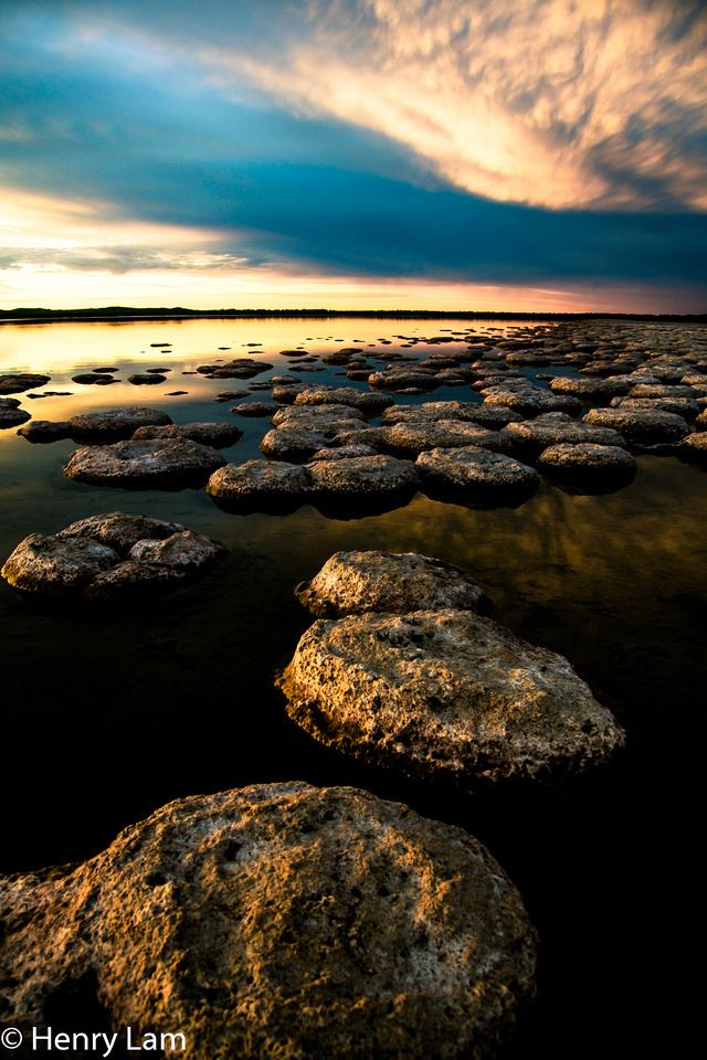 Thrombolites at Lake Clifton